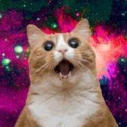 Аватарка пользователя Бешеный Кот